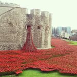 poppies-tower-of-london